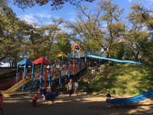福生公園のローラーコースター